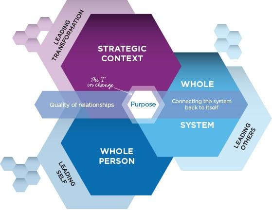 Approach - Acumen Global Partners